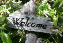 Conseils pour un jardin respectueux de l'environnement